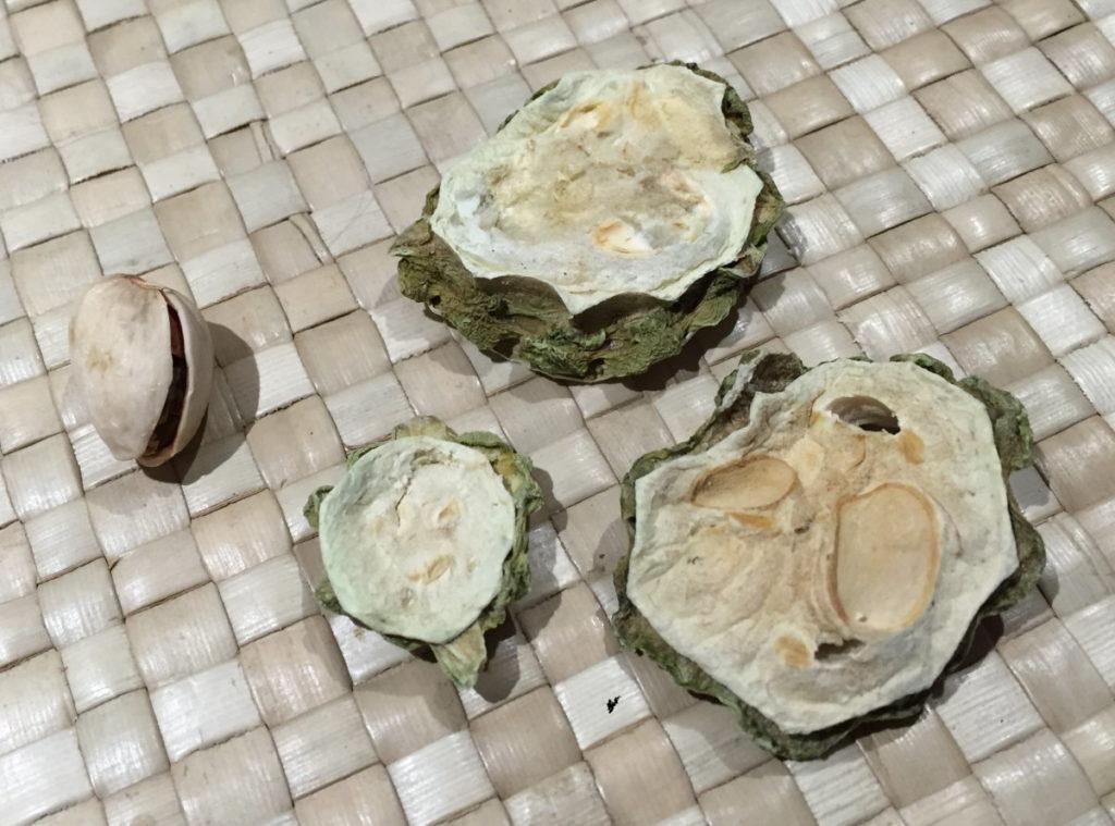 ゴーヤ茶(苦瓜茶)、抽出前、干茶